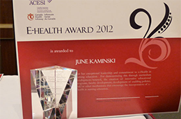 Nursing Faculty e-Health Award