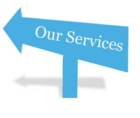 services from the nursing informatics learning center