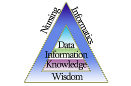 NI Data Pyramid